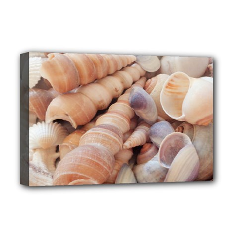 Sea Shells Deluxe Canvas 18  X 12  (framed) by yoursparklingshop