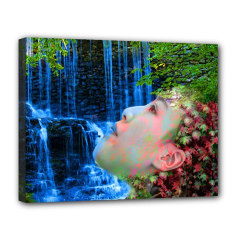 Fountain Of Youth Canvas 14  X 11  (framed) by icarusismartdesigns