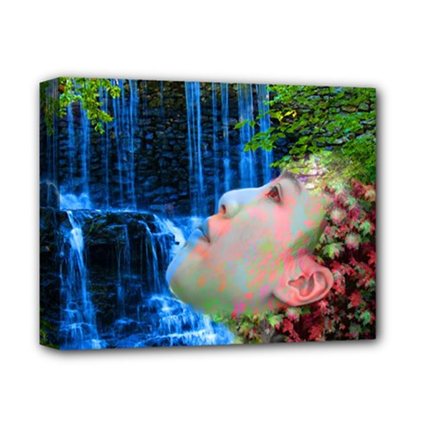 Fountain Of Youth Deluxe Canvas 14  X 11  (framed) by icarusismartdesigns