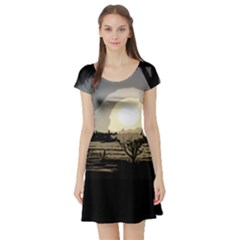 Sunrise Over The Plains Short Sleeve Skater Dress