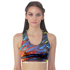 The Looking Glas Sports Bra
