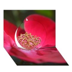 Bright Red Rose Circle 3d Greeting Card (7x5)  by timelessartoncanvas