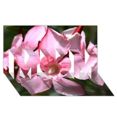 Pink Oleander Mom 3d Greeting Card (8x4)  by timelessartoncanvas