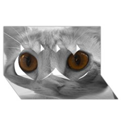 Funny Cat Twin Hearts 3d Greeting Card (8x4)  by timelessartoncanvas