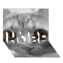 Funny Cat Hope 3d Greeting Card (7x5)  by timelessartoncanvas