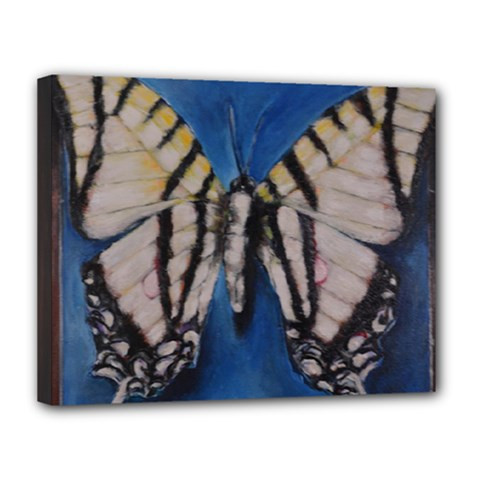 Butterfly Canvas 14  X 11  by timelessartoncanvas