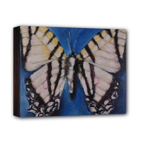 Butterfly Deluxe Canvas 14  X 11  by timelessartoncanvas