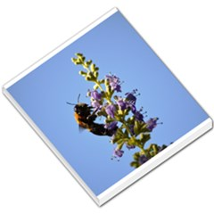 Bumble Bee 1 Small Memo Pads by timelessartoncanvas