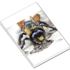 Bumble Bee 2 Large Memo Pads by timelessartoncanvas