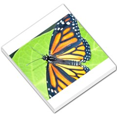 Butterfly 2 Small Memo Pads by timelessartoncanvas