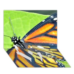 Butterfly 2 Love Bottom 3d Greeting Card (7x5)  by timelessartoncanvas