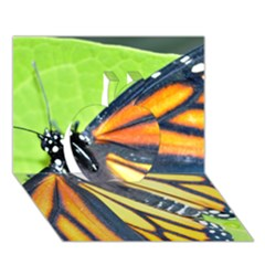 Butterfly 2 Apple 3d Greeting Card (7x5)  by timelessartoncanvas
