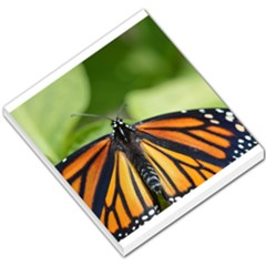 Butterfly 3 Small Memo Pads by timelessartoncanvas