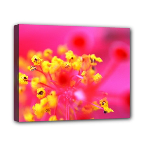 Bright Pink Hibiscus Canvas 10  X 8  by timelessartoncanvas