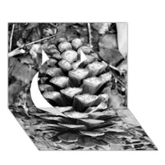 Pinecone Spiral Heart 3d Greeting Card (7x5)  by timelessartoncanvas