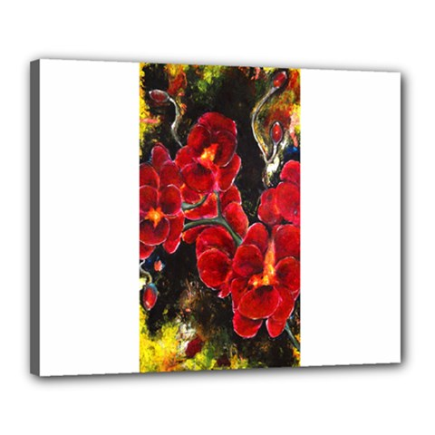 Red Orchids Canvas 20  X 16  by timelessartoncanvas