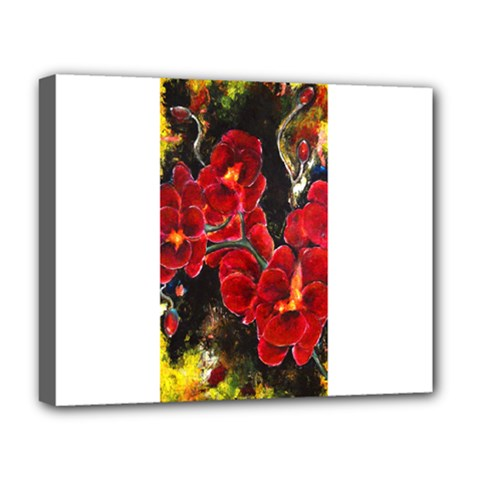 Red Orchids Deluxe Canvas 20  X 16   by timelessartoncanvas