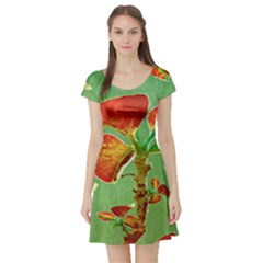 Tropical Floral Print Short Sleeve Skater Dresses by dflcprintsclothing
