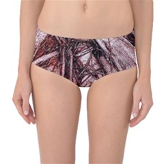 The Bleeding Tree Mid Waist Bikini Bottoms