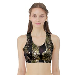 A Deeper Look Women s Sports Bra with Border