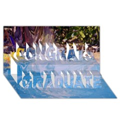 Splash 4 Congrats Graduate 3d Greeting Card (8x4)  by icarusismartdesigns