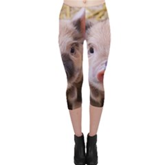 Sweet Piglet Capri Leggings