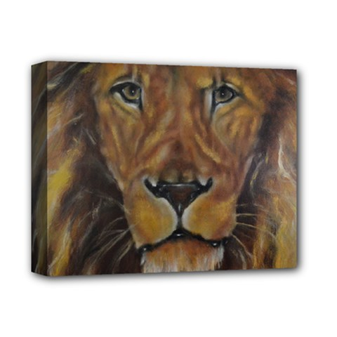 Cecil The African Lion Deluxe Canvas 14  X 11  by timelessartoncanvas