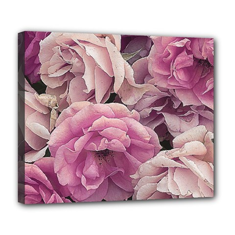 Great Garden Roses Pink Deluxe Canvas 24  X 20   by MoreColorsinLife