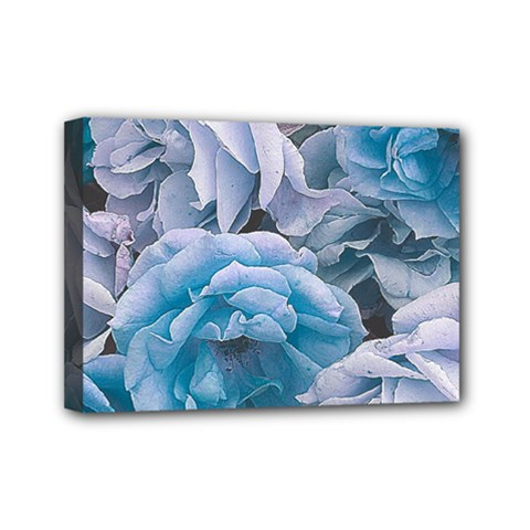 Great Garden Roses Blue Mini Canvas 7  X 5