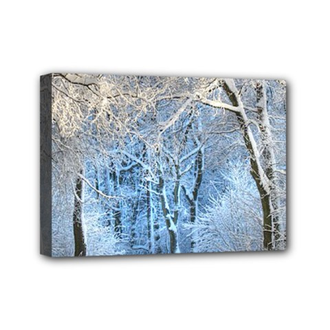 Another Winter Wonderland 1 Mini Canvas 7  X 5  by MoreColorsinLife
