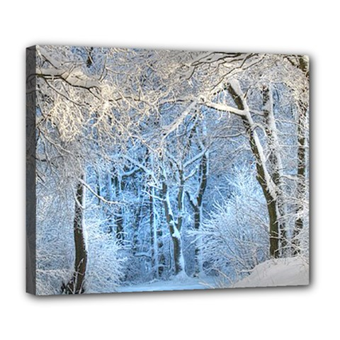 Another Winter Wonderland 1 Deluxe Canvas 24  X 20   by MoreColorsinLife