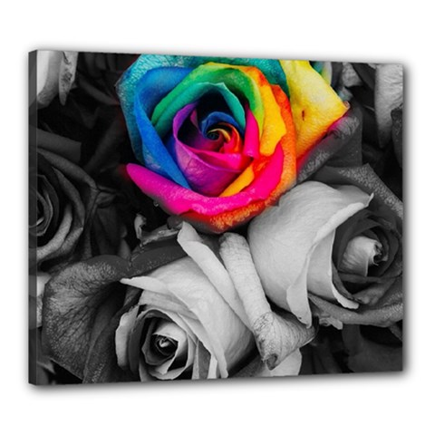 Blach,white Splash Roses Canvas 24  X 20
