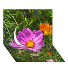 Amazing Garden Flowers 24 Circle 3d Greeting Card (7x5)
