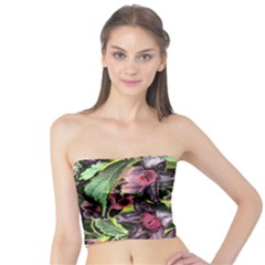 Amazing Garden Flowers 33 Women s Tube Tops by MoreColorsinLife