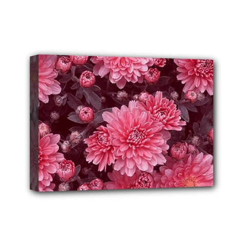 Awesome Flowers Red Mini Canvas 7  X 5  by MoreColorsinLife