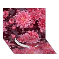 Awesome Flowers Red Circle Bottom 3d Greeting Card (7x5)