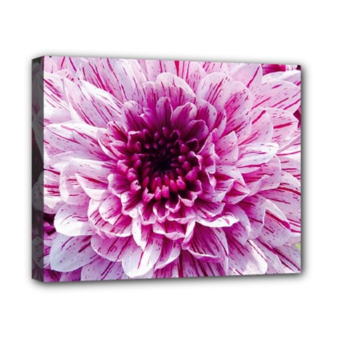 Wonderful Flowers Canvas 10  X 8