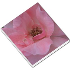 Pink Rose Small Memo Pads by timelessartoncanvas