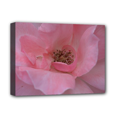 Pink Rose Deluxe Canvas 16  x 12