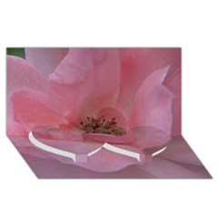 Pink Rose Twin Heart Bottom 3D Greeting Card (8x4)
