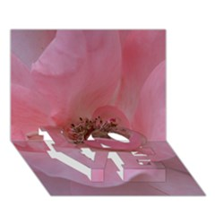 Pink Rose LOVE Bottom 3D Greeting Card (7x5)