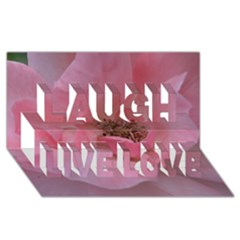 Pink Rose Laugh Live Love 3D Greeting Card (8x4)