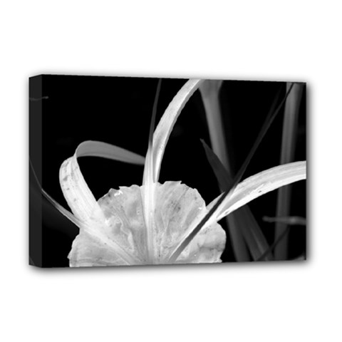 Exotic Black And White Flowers Deluxe Canvas 18  X 12   by timelessartoncanvas