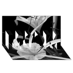 Exotic Black And White Flowers Mom 3d Greeting Card (8x4)  by timelessartoncanvas