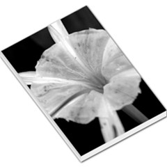 Exotic Black And White Flower 2 Large Memo Pads by timelessartoncanvas