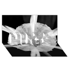 Exotic Black And White Flower 2 Hugs 3d Greeting Card (8x4)  by timelessartoncanvas