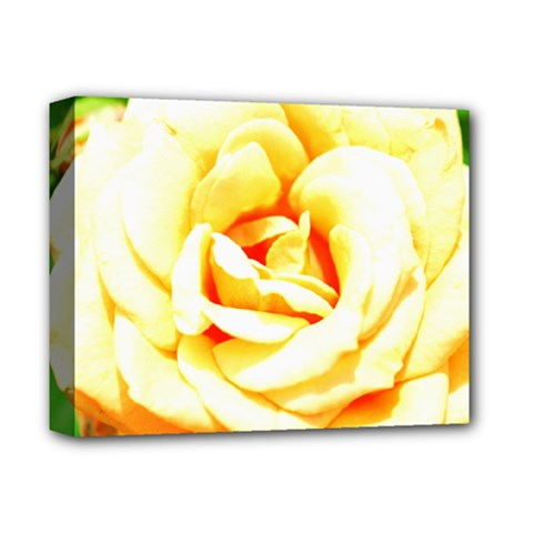 Orange Yellow Rose Deluxe Canvas 14  X 11  by timelessartoncanvas