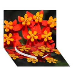 Orange And Red Weed Heart Bottom 3d Greeting Card (7x5)  by timelessartoncanvas