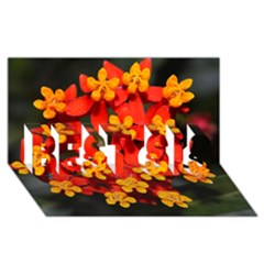 Orange And Red Weed Best Sis 3d Greeting Card (8x4)  by timelessartoncanvas