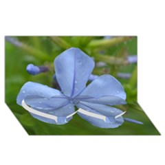 Blue Water Droplets Twin Heart Bottom 3d Greeting Card (8x4)  by timelessartoncanvas